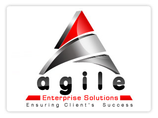 Agile Enterprice Solutions